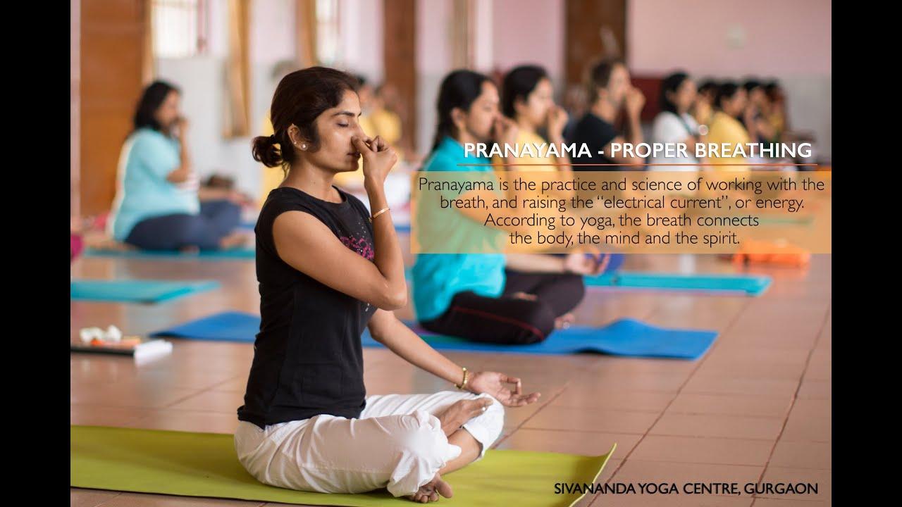Pranayama - Proper Breathing : 30 Mins