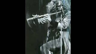Jethro tull Sealion live July 1975