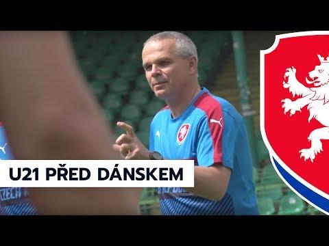 Vítězslav Lavička a Lukáš Zima před zápasem s Dánskem