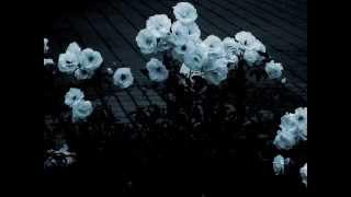 Sopor Aeternus - Ich Wollte Hinaus In Den Garten - Subtitulos español