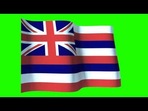 realistic flag of Hawaii state chroma