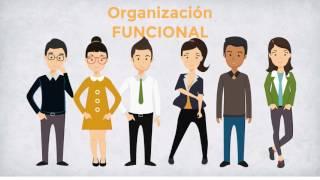 Download lagu La estructura organizacional