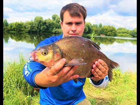 Утренняя рыбалка, для поддержания тонуса!!! Москва река богата рыбой!!!