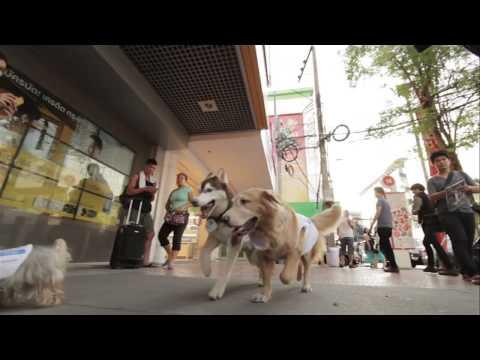 Creative Juice Bangkok ad for Dtac - via Mumbrella Asia
