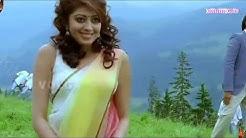 South Indian Hot & Sexy Actress Pranitha Subhash Hot Boobpress and Navel Show HD