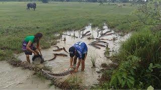 Amazing fishing at Battambang - people fishing in Cambodia - How to Catches fish (Part 127)