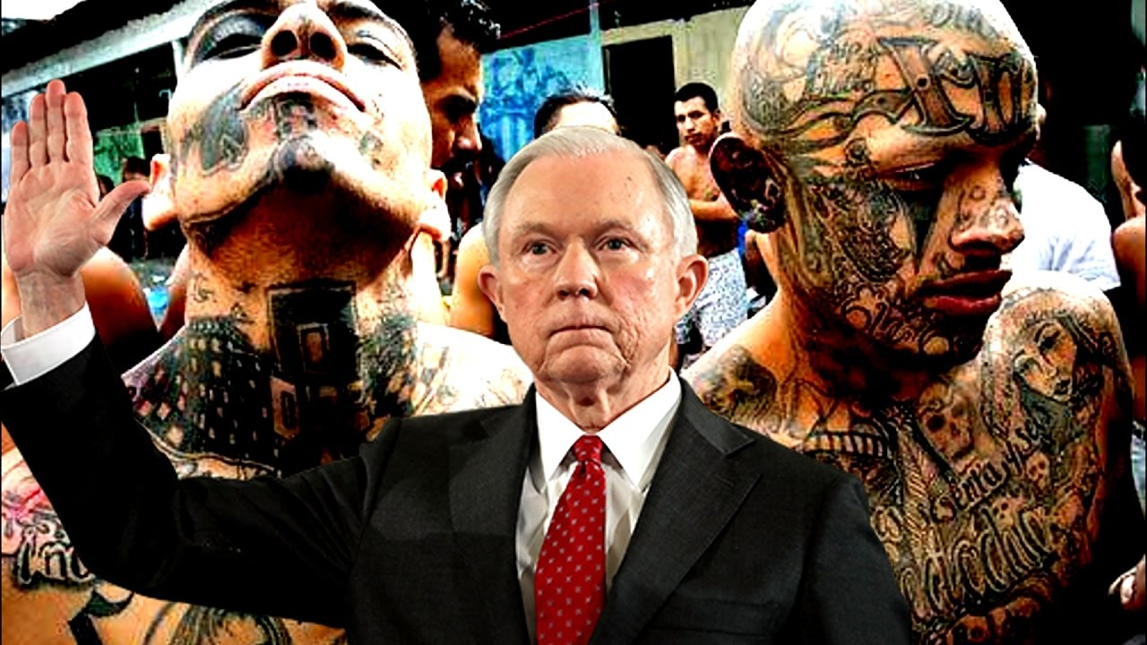 Image result for jeff sessions ms-13