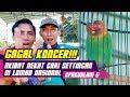 PIALA PAKUALAM 6 : Lovebird Acoy GAGAL KONCER!!! Gara gara Nekat Cari Settingan di Lomba Nasional