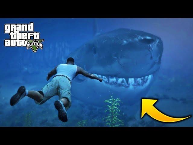 ¿Que Pasa Si Nos Enfrentamos al Megalodon de GTA 5?🦈 Mega Tiburon GTA V