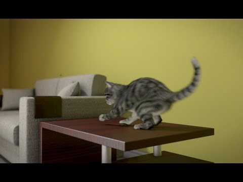 Realistic 3D cat animation study