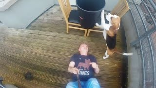 Dog Helps Idiot with ALS Ice Bucket Challenge