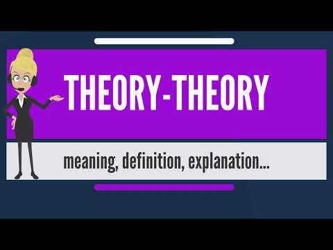 What is THEORY-THEORY? What does THEORY-THEORY mean? THEORY-THEORY meaning & explanation