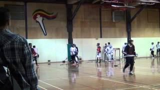 Ball Hockey Fights - Ball Hockey Brawls - Surrey Crooks vs. Pacific Jaguars (More Fights - Raw)