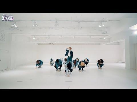 THE BOYZ(더보이즈) 'Bloom Bloom' DANCE PRACTICE VIDEO