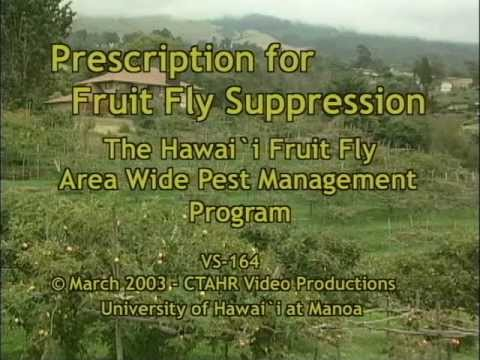Prescription for Fruit Fly Suppression (Hawaii)