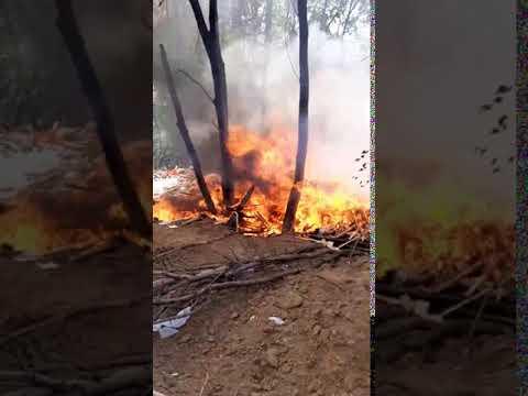 Поджог несанкционированной свалки на Центролите Рязань