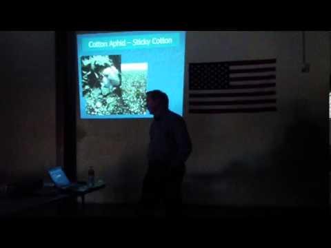 California Cotton IPM- Larry Godfrey