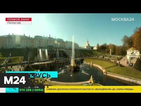Москвичам рассказали, как добраться до Санкт-Петербурга - Москва 24