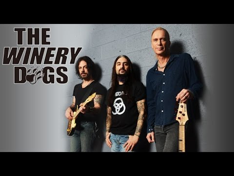 Winery Dogs Youtube