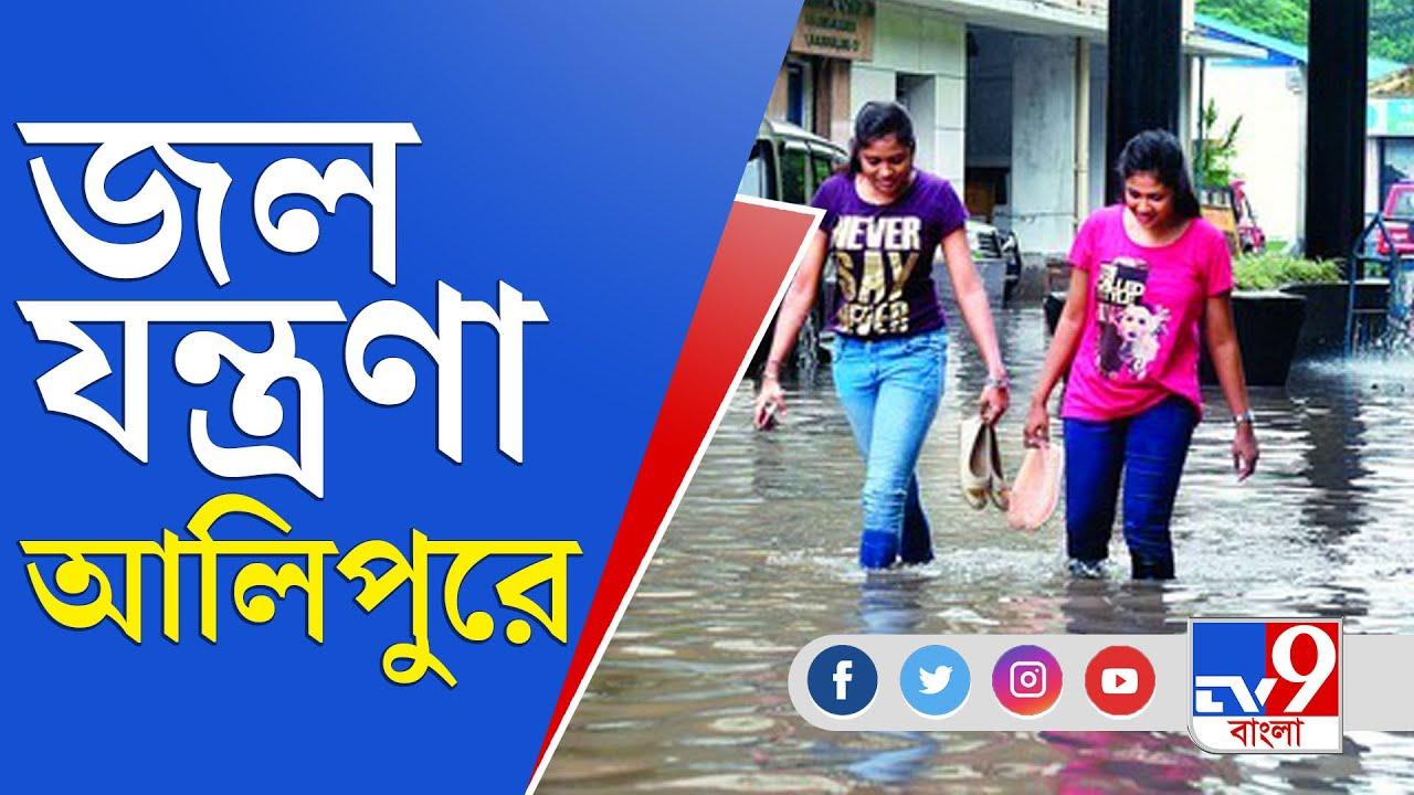 Alipore Waterlogging   Heavy Rain   রাতভর টানা রাতভর বৃষ্টিতে জলমগ্ন আলিপুর