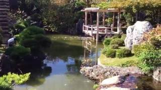 神奈川県大磯吉田茂邸宅、2676,11,19 Sat,2676,11,19土曜日撮影.