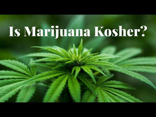 Is Marijuana Kosher?