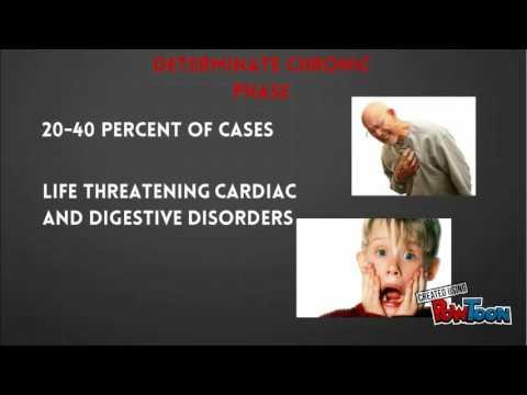 Chagas Disease BMS451