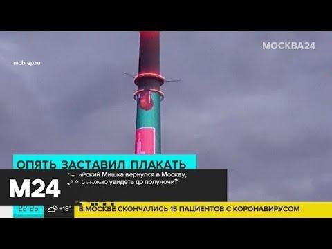 Знаменитого Олимпийского мишку-80 показали на Останкинской телебашне - Москва 24