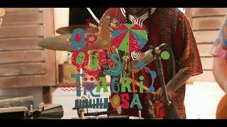 Baixar Orquestra Greiosa - Hino da Ribeira (Live Session)