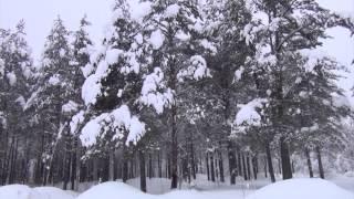 Сергей Чекалин - Падал снег. HD