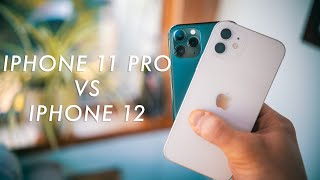iPhone 11 Pro vs 12 Camera test! Is the iPhone 12 better?