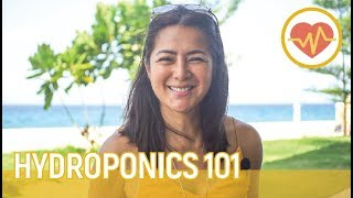 #Hydroponics101 with Alice Dixson