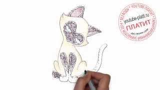 Нарисованные кошки аниме  Как быстро и просто нарисовать кошку из мультика за 31 секунду