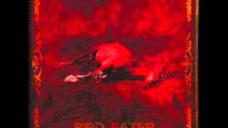 Bird Eater - The Crying Witch (La Llorona)