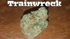 Canadian Cannabis Strain Review - Trainwreck