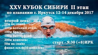 XXV КУБОК СИБИРИ II этап, г. Иркутск, 12-14 декабря 2017 день второй