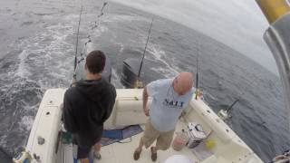 "Tuna Fishing Off the ""DUMP"" Point Judith RI Aug 31st 2016, W/Capt Tom Nee"