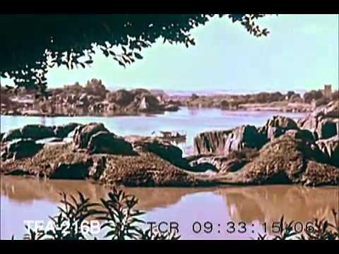 Egypt Today, 1950s