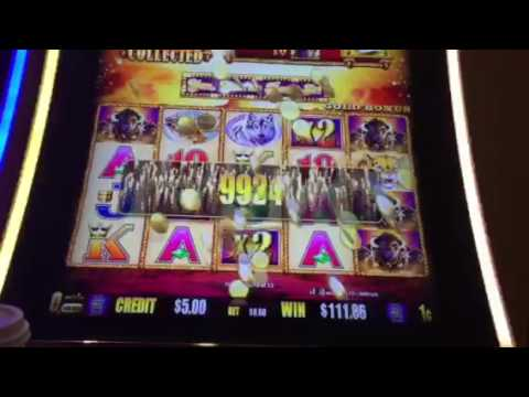 Buffalo Gold Slot Machine Bonus Big Win Treasure Island Casino Las Vegas