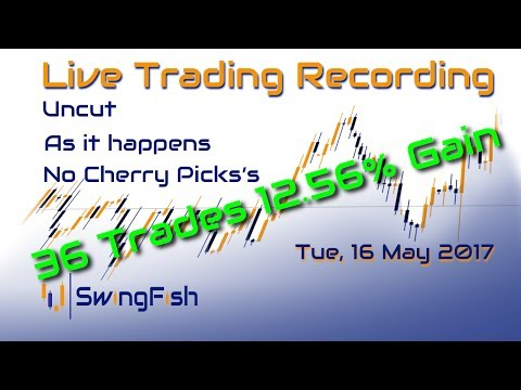 Live-Trading Forex [Tue, 16 May 2017 | +12.56% | 36 Trades]