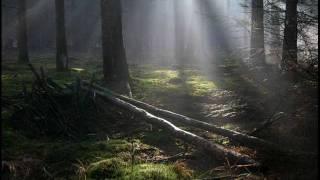 Starkoo & Servé - het regent zonnestralen