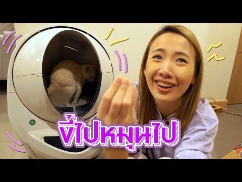 หุ่นยนต์ส้วมแมว!! อึสนุกเหมือนได้เล่น 4DX