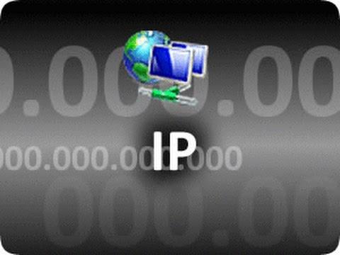 Определить IP-адрес сайта