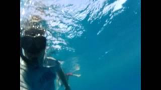 Castaway Film location / Island - swimming to shore from Seaspray Boat