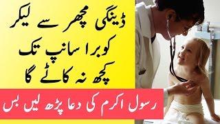Har Qism Ke Janwar ke Shar se Bachne Ki Dua | The Urdu Teacher