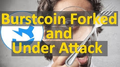 Burstcoin Network Fork and Under DDoS Attack (Forked)