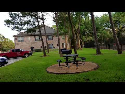 Моя квартира и мой район.  Обычная жизнь в США