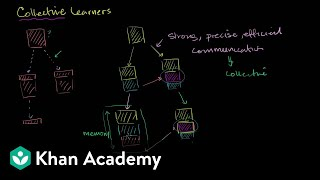 Collective learning | Life on earth and in the universe | Cosmology & Astronomy | Khan Academy