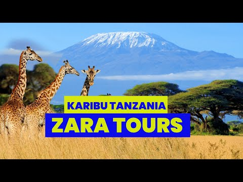 welcome-to-zara-tours,-the-leading-travel-and-tour-company-in-tanzania