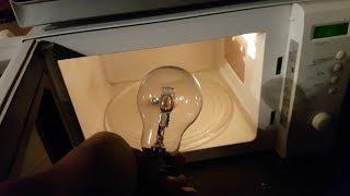 Microwave oven and bulb / Mikrovlná rúra a žiarovka